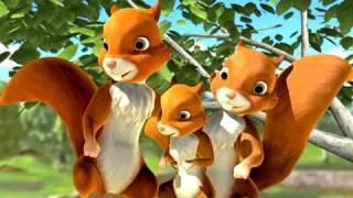 Koko i wiewiórki