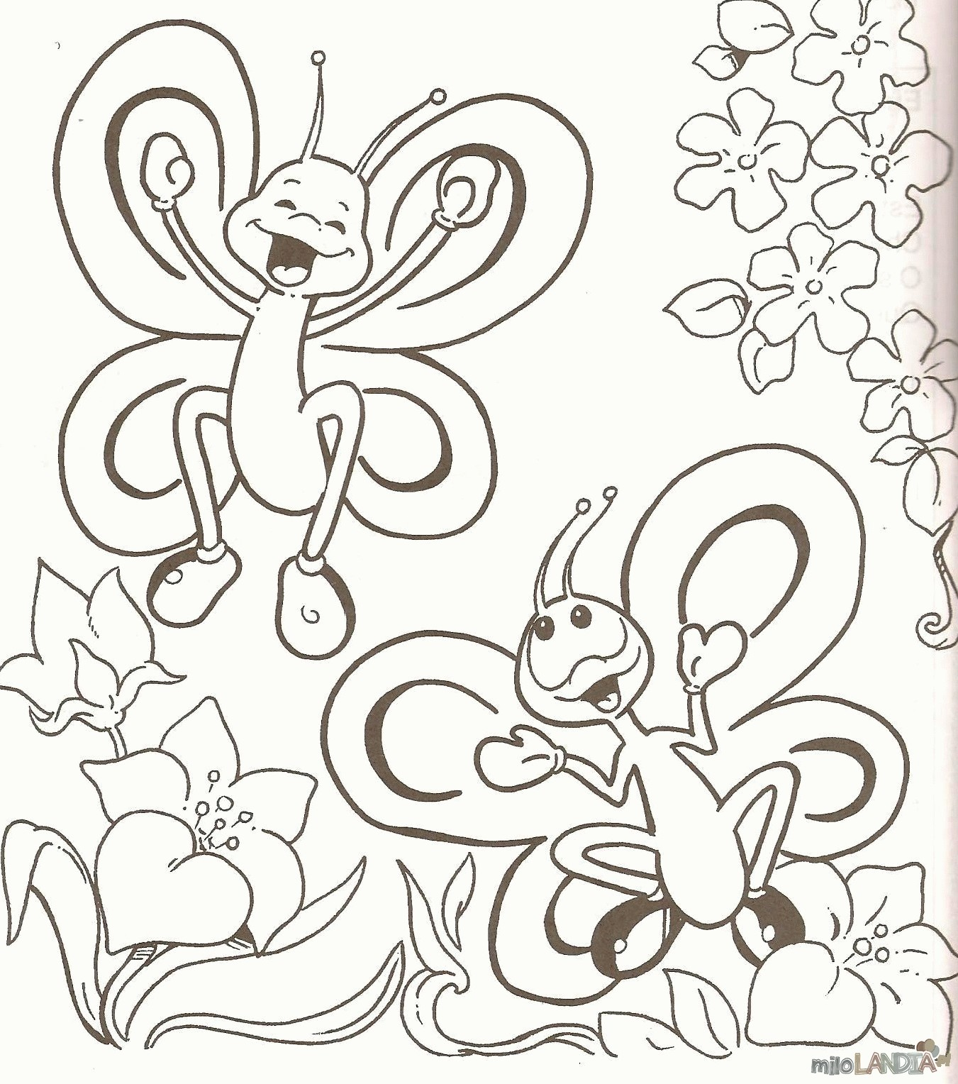 Motyle i gąsienice :: 2