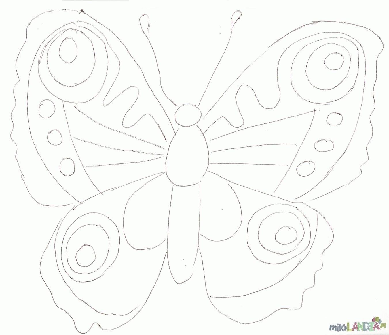 Motyle i gąsienice :: 3