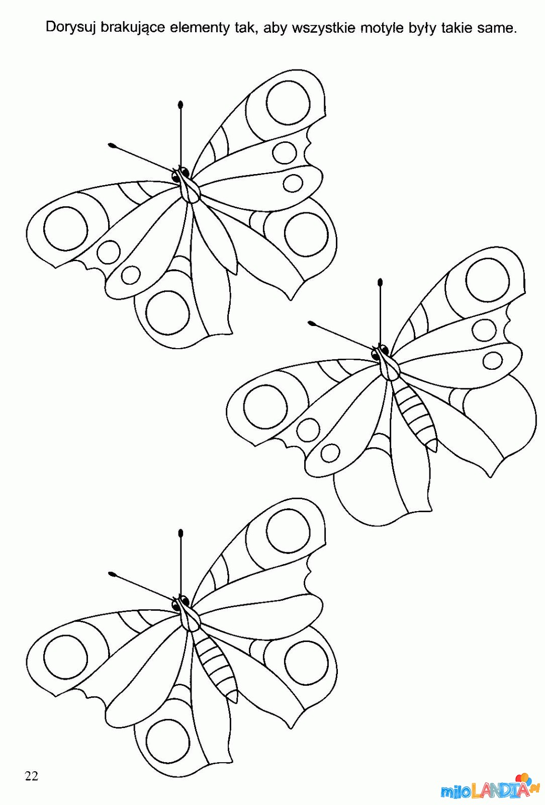 Motyle i gąsienice :: 4