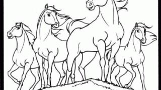 Mustang z dzikiej doliny :: 16
