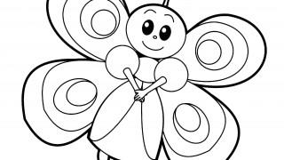 Motyle i gąsienice :: 9