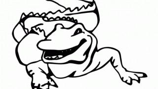 Krokodyle i aligatory :: 3